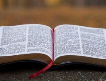 TITO 3: 1-11 JUSTIFICADOS POR GRACIA